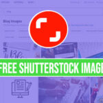 shutterstock images without watermark